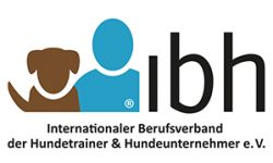 logo ibh